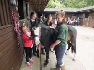 Pony Day @ Hope Pastures | United Kingdom