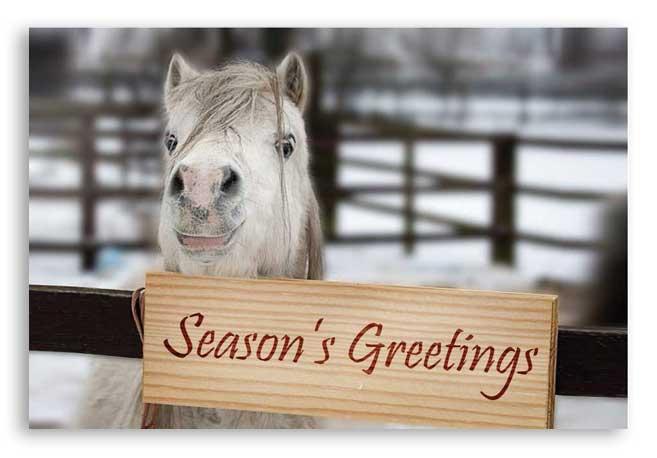 'Rafael' Christmas cards