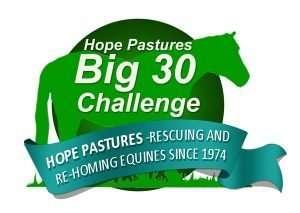 The Big 30 Challenge logo